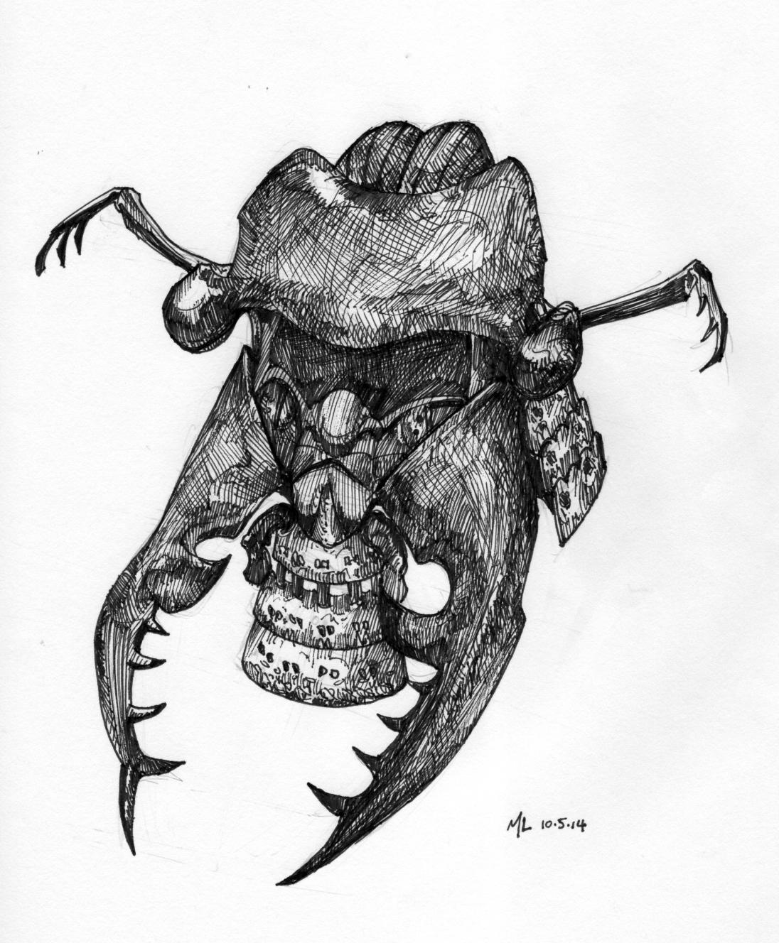 kabuto, stag beetle
